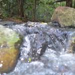 nice flowing stream