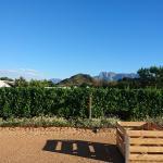 Landscape - Babylonstoren Farm Hotel Photo