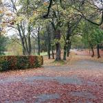 Lister Park in Autumn