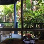 View from Hikari Room