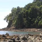 La plage du parc Manuel Antonio, à proximité de l'hôtel