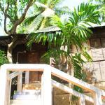 Tree Cottage