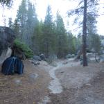 Photo of Yosemite Creek Campground