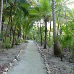 Glover's Atoll Resort Foto
