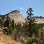 Zion-Mt. Carmel Highway Foto