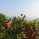 Shivapuri Heights Cottages Foto