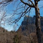 From the village Alpine Gardens