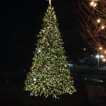 Downtown Blue Ridge Christmas Tree