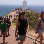 Sand Safaris Cape Reinga 90 Mile Beach Tours Foto