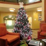Christma Tree in Lobby December 2015, Fairfield Inn and Suites, Santa Rosa/Sebastopol