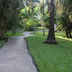 Paths on the ground that lead to the pool area
