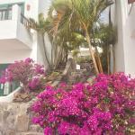 Hotel Jardin Tecina Photo