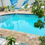 Der Pool vom Duval House