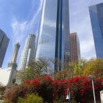 Downtown LA's highrises
