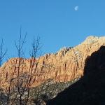 A Taste of Zion Landscape