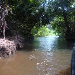 Jungle Land Panama: Day Excursions Image