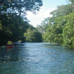 Kayaking the salt river to salt lake