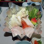 Photo of Shirasagi