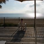 Penthouse, deck