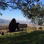 Foto de Agriturismo Il Toppo