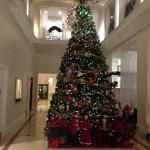 Beautiful Xmas tree in lobby of hotel.