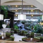 Foto de Embassy Suites by Hilton Dallas DFW Airport South