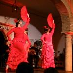 Photo de Tablao Flamenco Cardenal