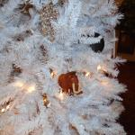 Manny frolics in Hotel Christmas tree