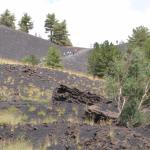 A recent lava flow went across one of the roads