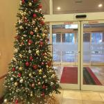 Hampton Inn & Suites Williamsburg-Central Foto