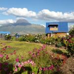 Vista desde el Hostal. Volcan Imbabura
