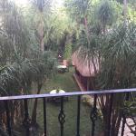 Photo de Hotel Lunata