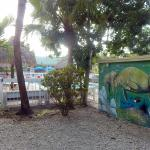 the outside pool and part of manatee mural