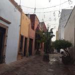 Zdjęcie El Petate Hostel