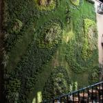 Foto de Hotel Downtown Mexico