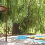 Photo de Refugios La Fontera