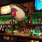 shark over the bar