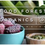 Food Forest Organics