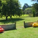 Two free Kayaks