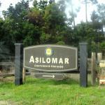 Photo de Asilomar Conference Grounds