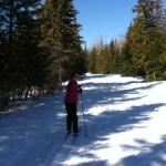 MacLeod Provincial Park