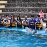 Foto de Dolphin Discovery Six Flags