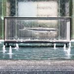 The Ritz-Carlton, Dubai International Financial Centre Foto