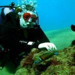 Foto de Atlantis Diving Lanzarote