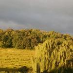 Hawk Valley Retreat & Cottages Foto