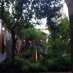 Foto de Eden at Palais Amani