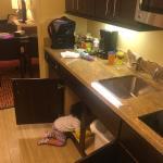 Photo de TownePlace Suites Ann Arbor