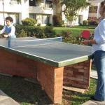 Juegos de mesa en el área verde