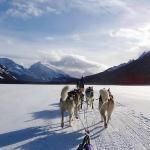 On a frozen Lake