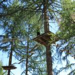 Forêt Aventures
